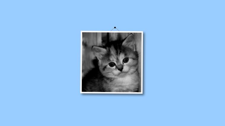 [CSS]画像をゆらゆらと振り子のようにアニメーションで揺らすスタイルシート   コリス