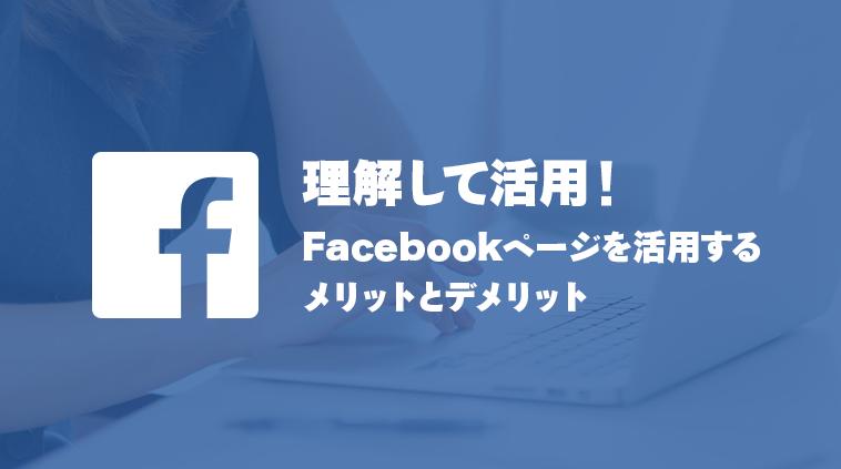 thumb_facebookpage-melit-demerit